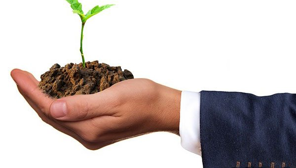 To grow or not to grow your business: either way takes work
