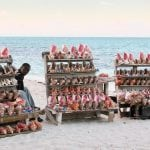 conch-shells-for-sale-on-the-beach