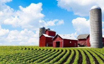 Net farm income in Canada declined in 2017