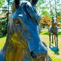 Spruce Meadows cancels June and July events