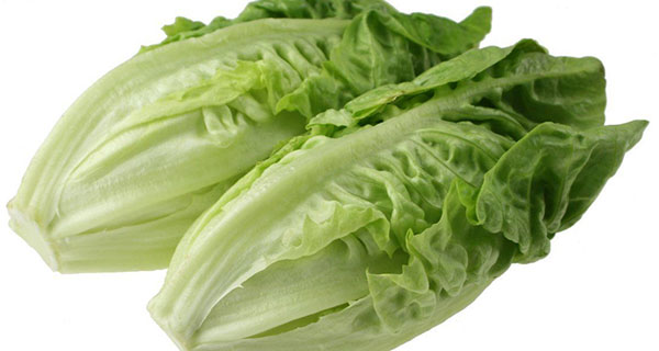 Romaine calm returns but produce safety not guaranteed