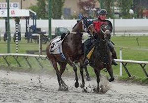 Long considered among the most dangerous jobs in horse racing, outrider Cindy Barroby catches a loose horse prior to a race at Hastings Racecourse in Vancouver.