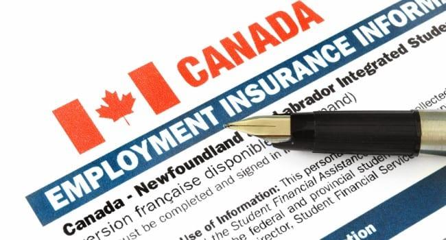 Calgary, Edmonton see big drop in EI recipients