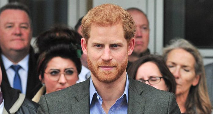 prince harry monarchy