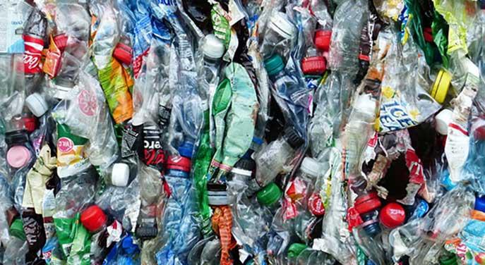Plastic bottles climate change