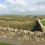 croft-stonewall-fencing-at-skara-brae-mainland-orkney-islands